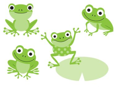 1000+ ideas about Cute Frogs on Pinterest.