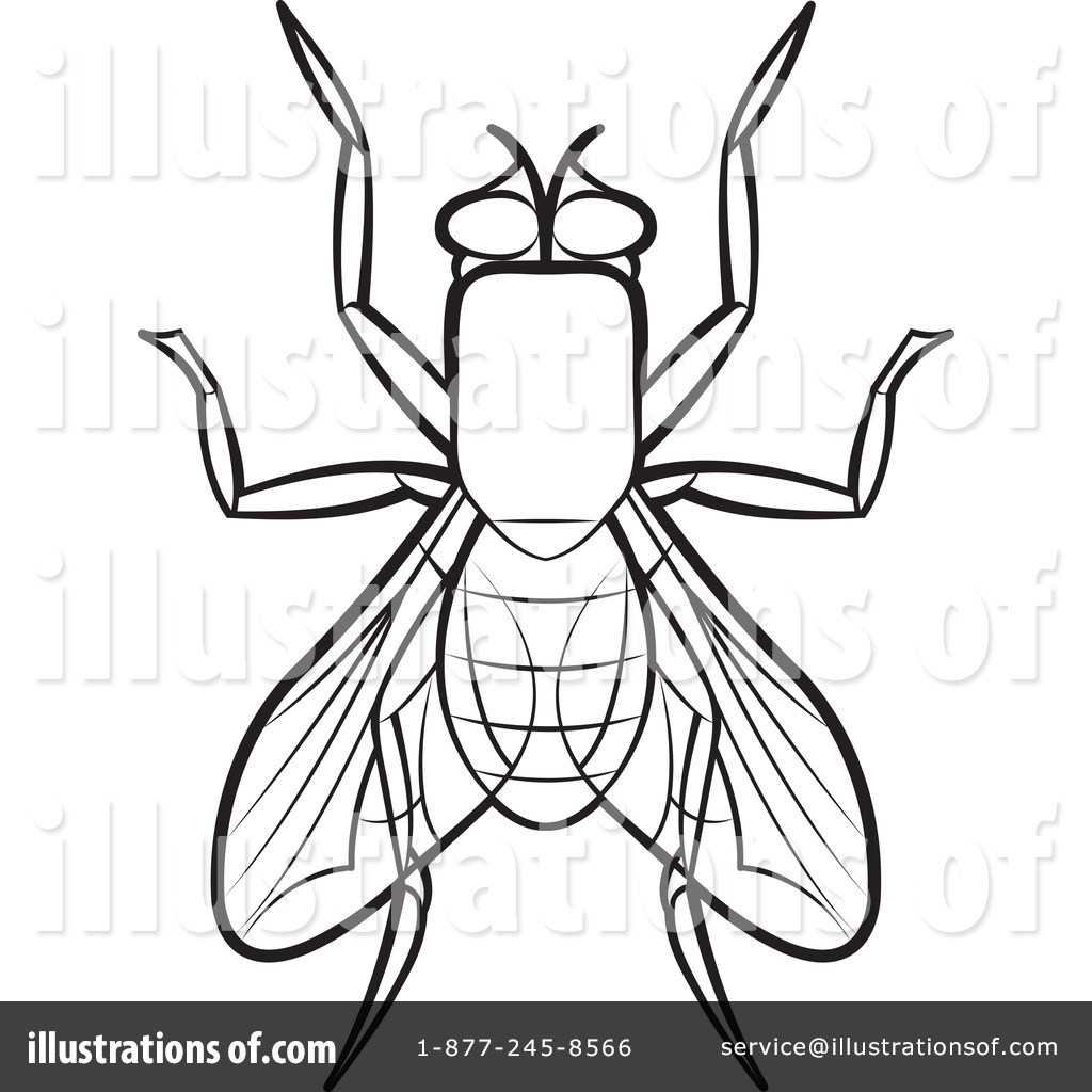 House Fly Clipart #1192469.