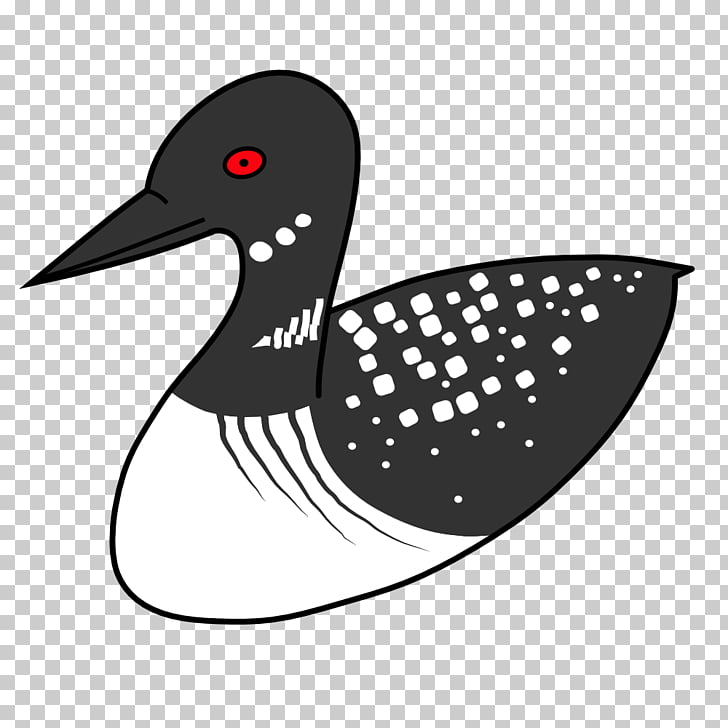 Duck Bird Common loon , loon PNG clipart.