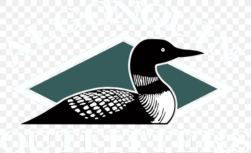 Common Loon Drawing Bird Duck Clip Art, PNG, 1600x975px.