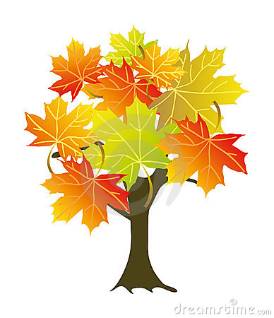 Sugar Maple Tree Clipart.