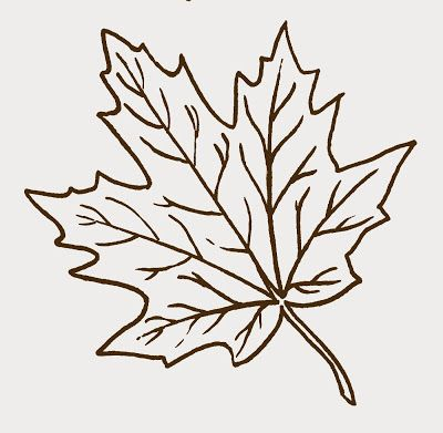 Free clip art ~ maple leaf.