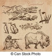 Murre Stock Illustration Images. 19 Murre illustrations available.