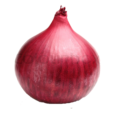 Onion PNG Images Transparent Free Download.