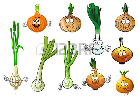 781 Green Onions Stock Illustrations, Cliparts And Royalty Free.