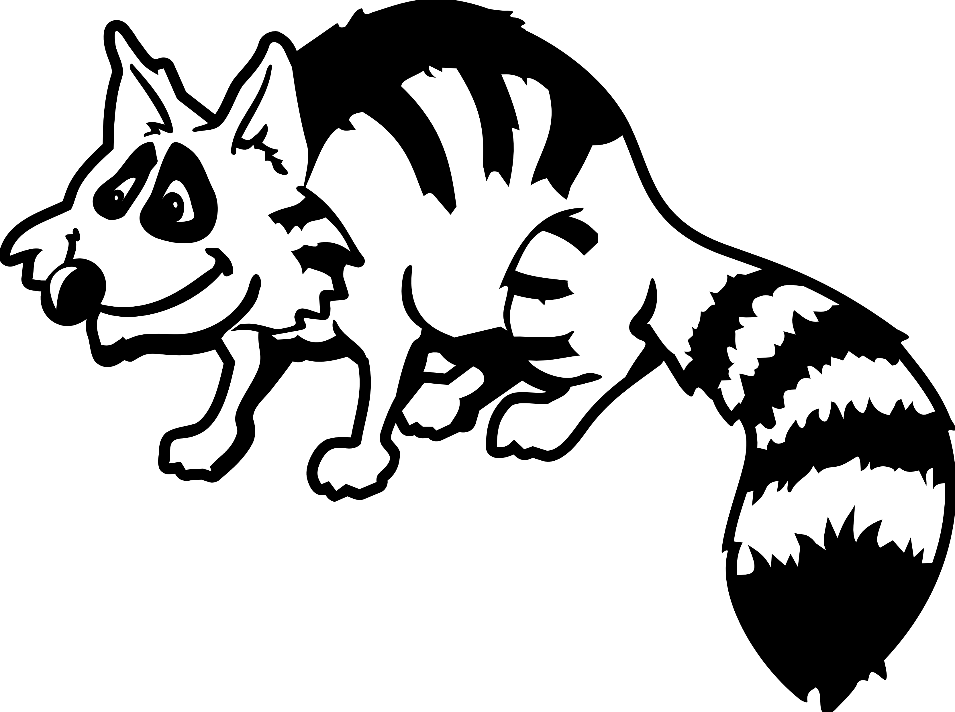 Raccoon Clipart Black And White.