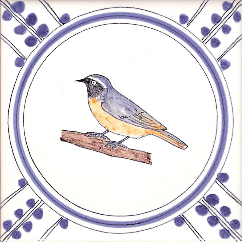 Colour Garden Bird tiles.