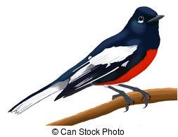 Redstart Clip Art and Stock Illustrations. 17 Redstart EPS.