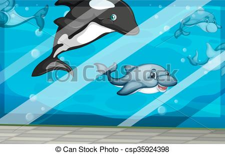 EPS Vectors of Dolphins swimming in the aquarium tank illustration.
