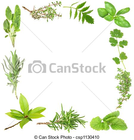 Herb Cooking Clipart.