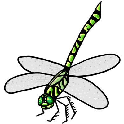 Free Dragonfly Clip Art 22.