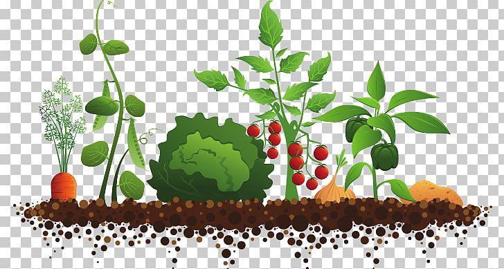 Garden Club Community Gardening Master Gardener Program PNG, Clipart.