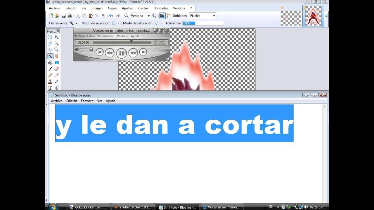 como hacer una imagen png (sin fondo) en paint.net.