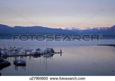 Stock Photography of Boats in marina, Comox Bay, Comox Glacier in.