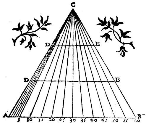File:Fabrica et uso del compasso polimetro.