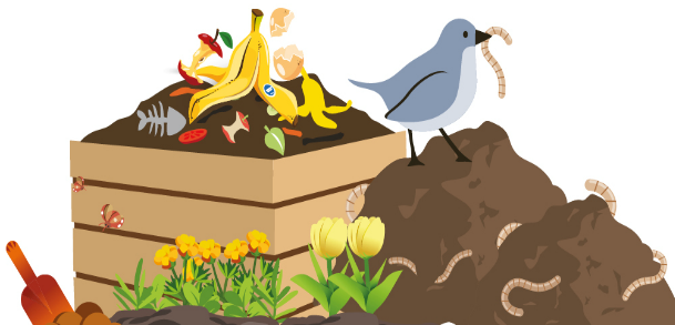 Attend a workshop and get a free compost bin.