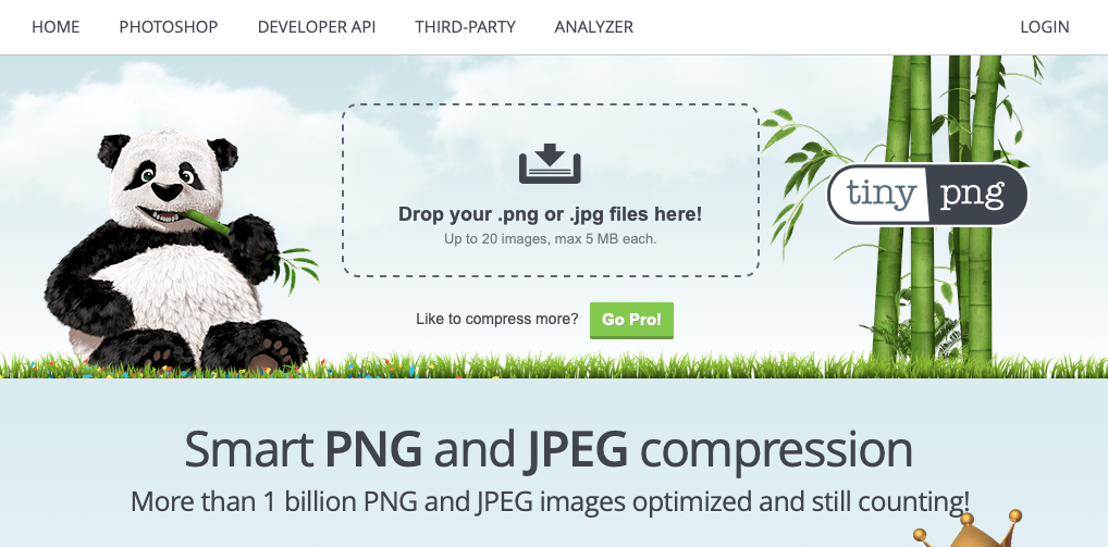 Using tinypng Wordpress plugin for image size optimization.