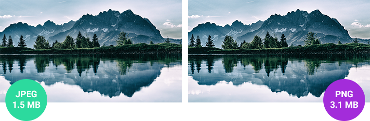 JPEG vs. PNG: Why Image Formats Matter for a Fast Website.