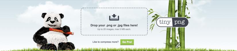WordPress Image Optimization: Plugins & Tools to Improve Photo.