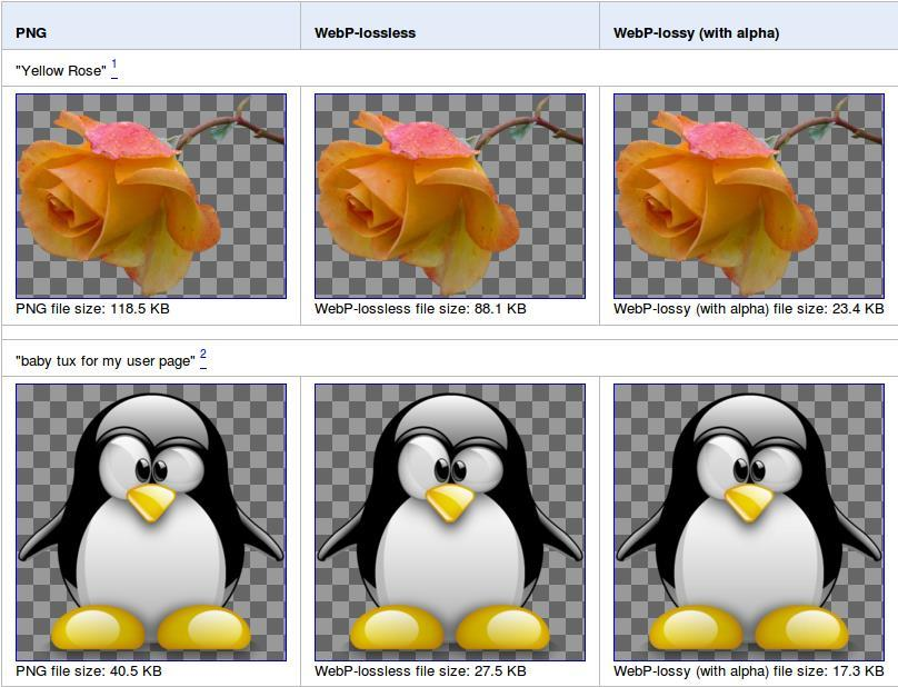 Raster Images,File Extensions & Cover Compression.