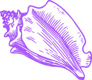 Conch shell clipart.