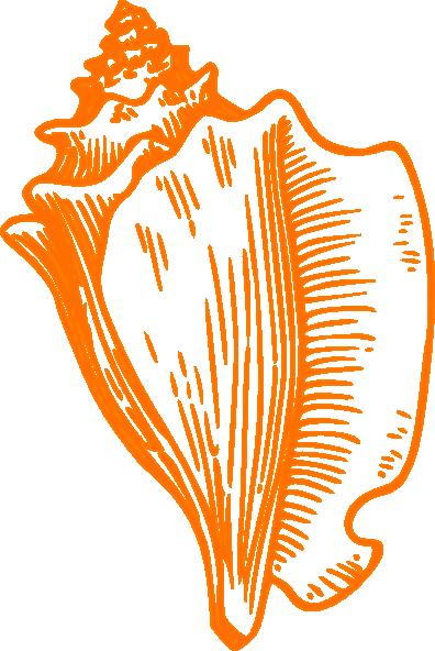 Conch Clipart.