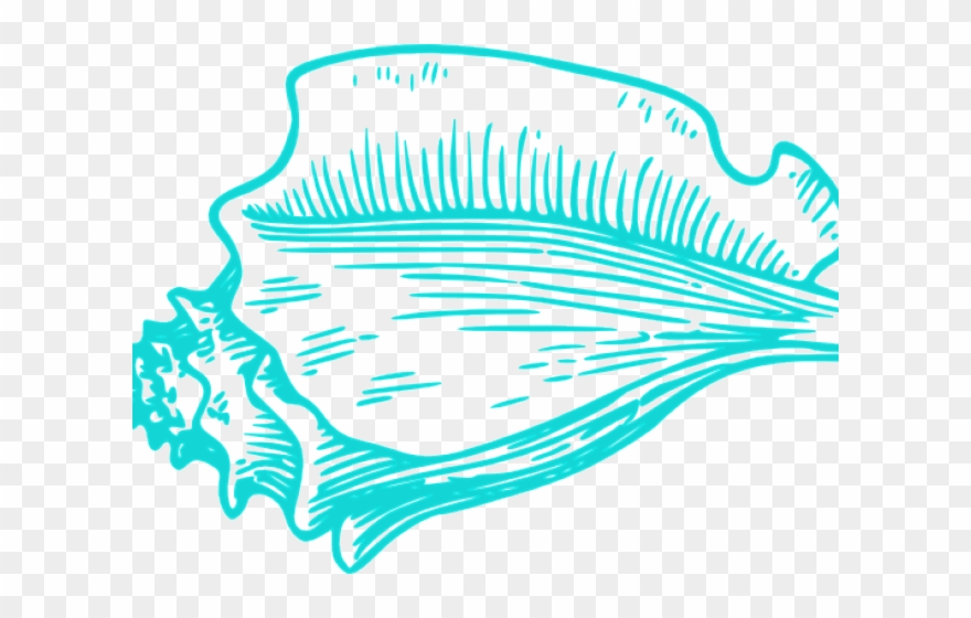 Shell Clipart Teal.