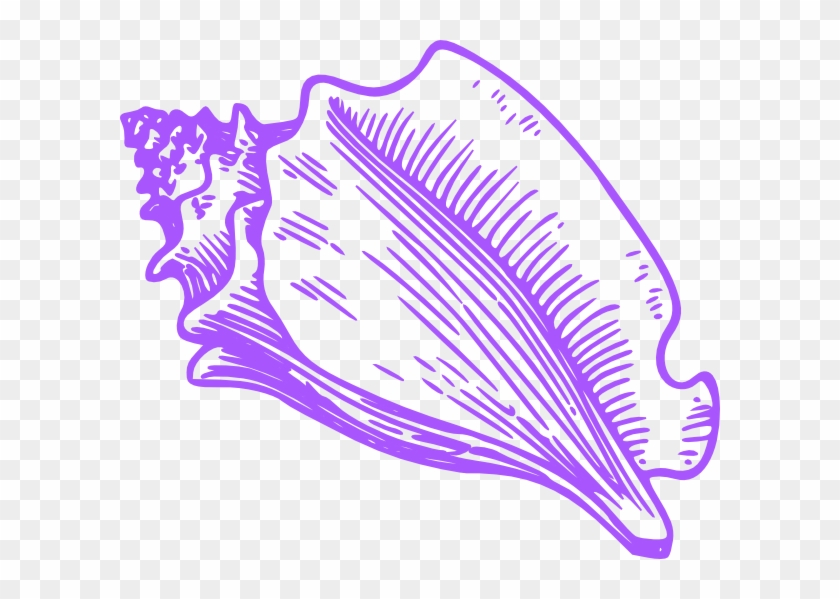 Conch Shell Clip Art, HD Png Download.