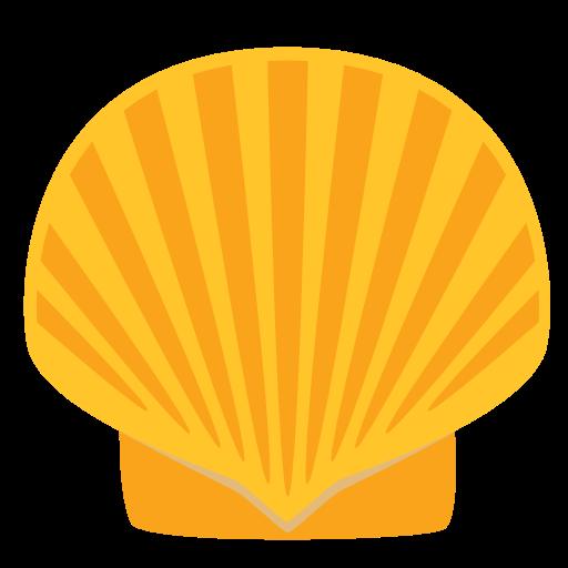 Concha de mar png » PNG Image.