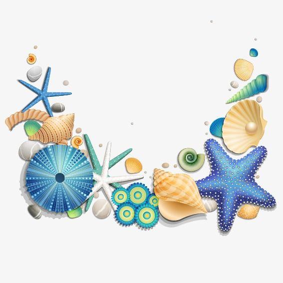 Conchas E Estrela Do Mar Azul, Conchas E Estrela Do Mar Azul, A.