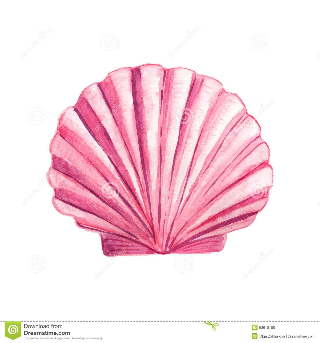 pink and ivory seashell watercolor art.