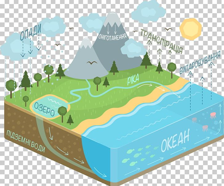 Water Cycle Diagram Condensation PNG, Clipart, Cloud.