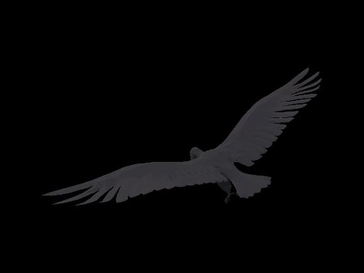 Condor Png Vector, Clipart, PSD.