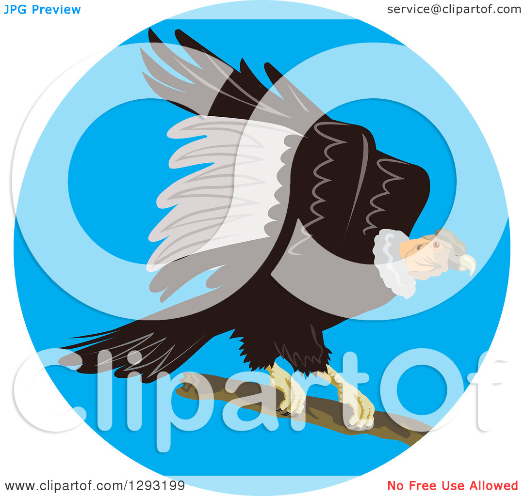 Clipart of a Condor Landing in a Blue Circle.