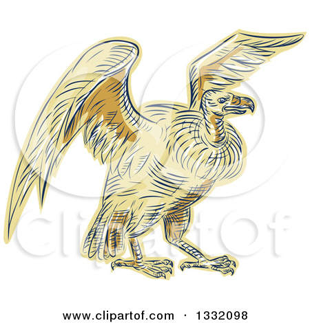 Clipart of a Retro Sketched or Engraved Turkey Vulture Buzzard.