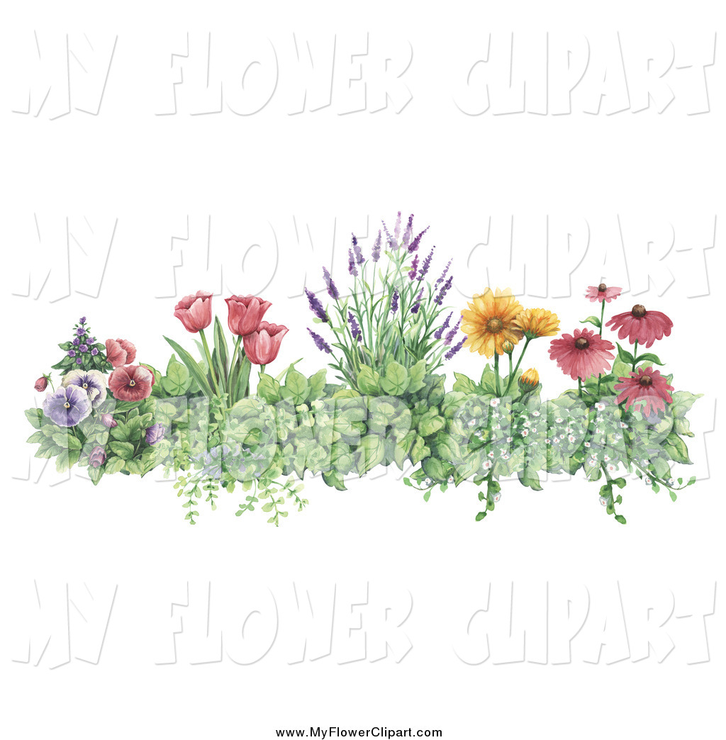 Royalty Free Stock Flower Designs of Floral Borders.