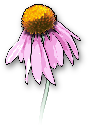 Free Flower Clipart and Graphics.