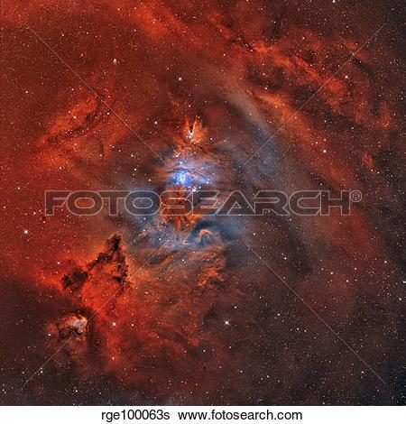 Stock Images of The Christmas Tree Nebula, Cone Nebula and Fox Fur.