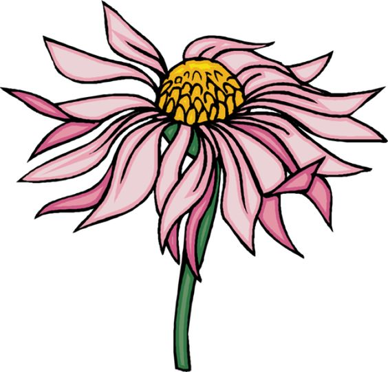 Clip art, Flower and Pink on Pinterest.
