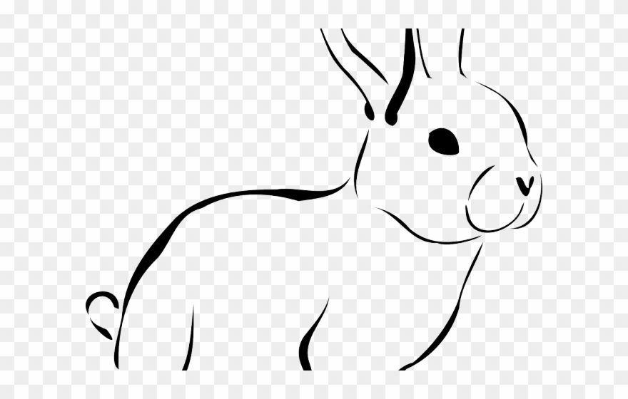 Rabbit Clipart Conejo.