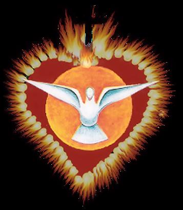 Paloma del espiritu santo confirmacion png 2 » PNG Image.