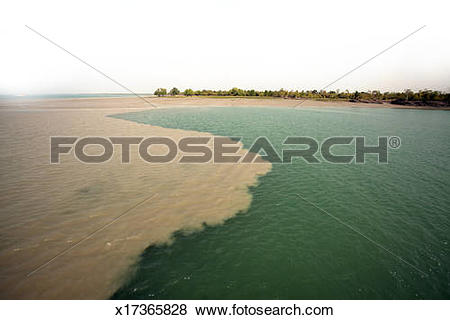 Pictures of Confluence of Two River,Sundarban x17365828.