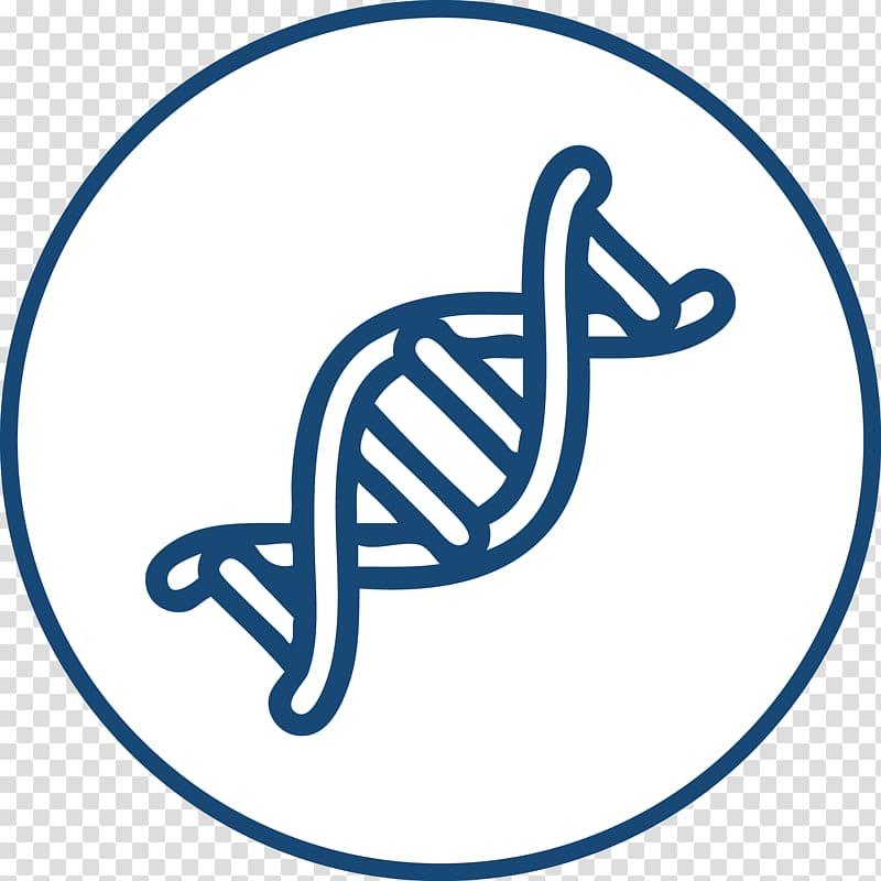Nucleic acid double helix DNA RNA Genetics, congenial.