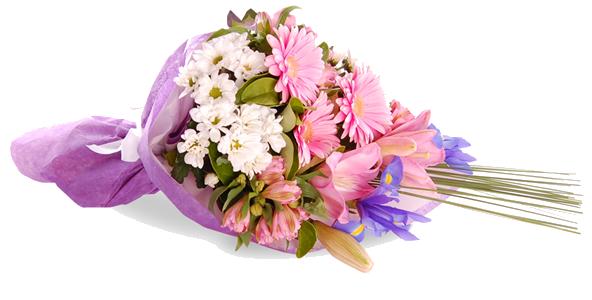 Download Congratulation Flower PNG Clipart.