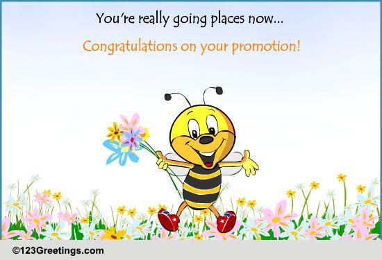 congratulations on.