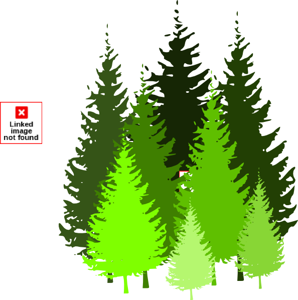 Conifer Tree Clipart.