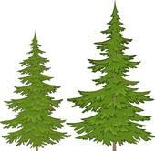Conifer Clip Art.