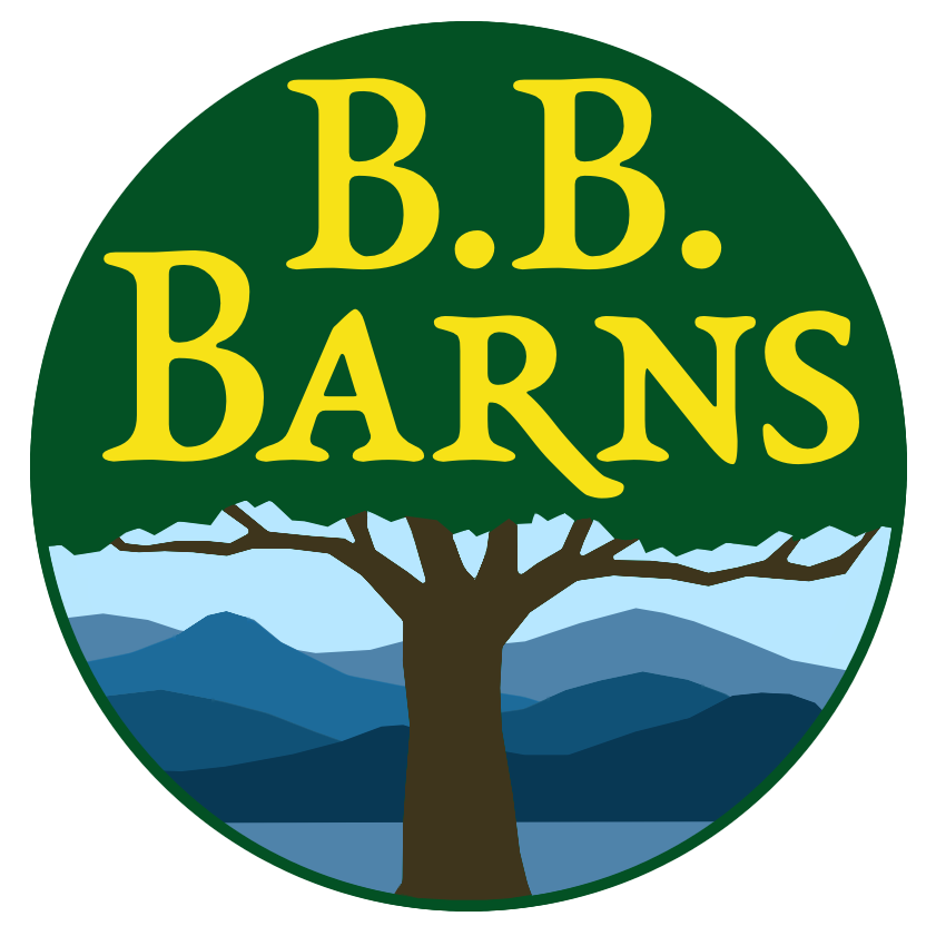Conifers: An Interview with Jon Merrill — B. B. Barns.