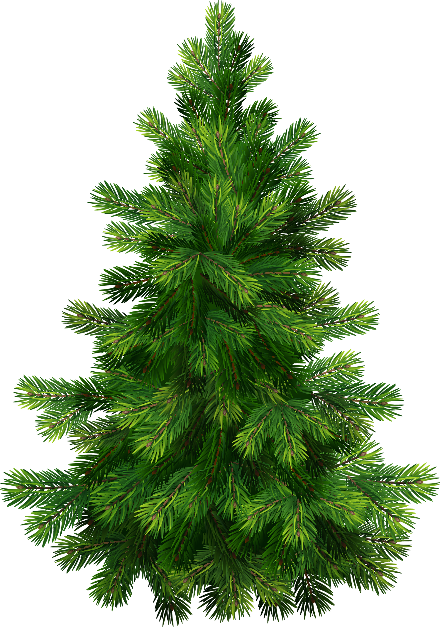Clip art pine tree free clipart images image.