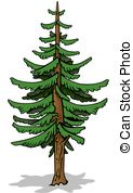 Coniferous tree Vector Clipart EPS Images. 4,053 Coniferous tree.
